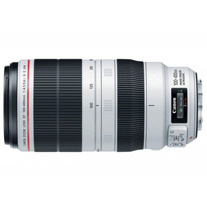 EF 100-400mm f4-5.6L IS II 백사투